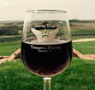 WineryFocus